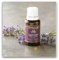 lavender2 295x300 9 Everyday Oils Collection