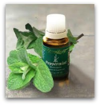 peppermintessentialoil 9 Everyday Oils Collection